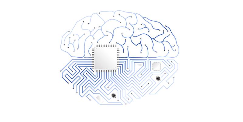 Towards whole-brain emulation: a flowchart with proposedsteps