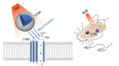 Upconversion nanoparticles and NIR
