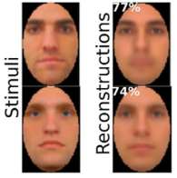 eeg reconstructions of faces