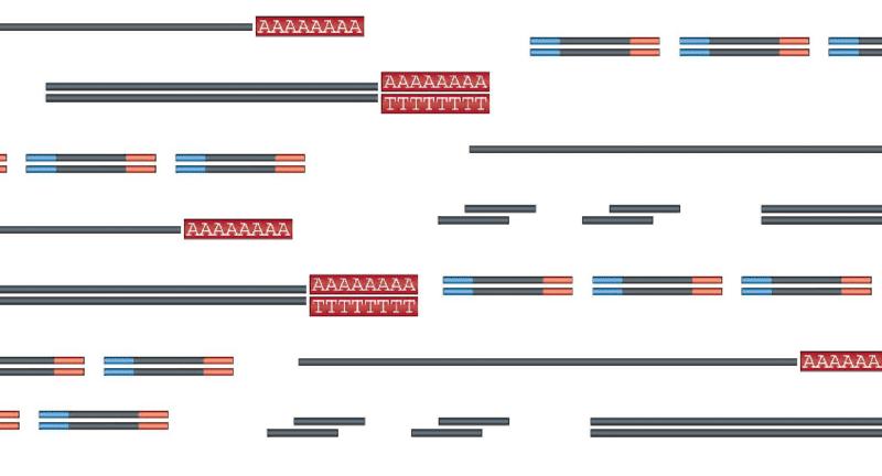 Notes on RNA-seq
