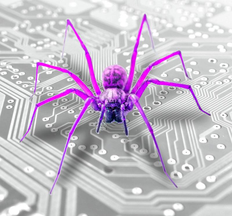 circuit_spider