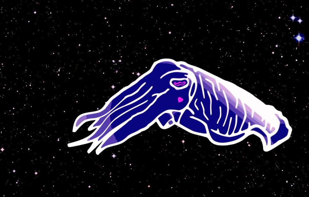 Eliascuttlefish_onbackground
